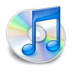 muzik-cdsi