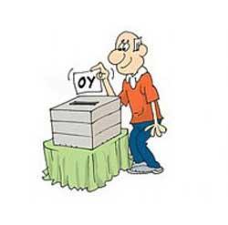 oy-kullanmak