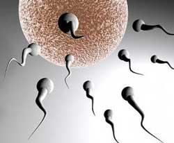 Rüyada Sperm Yutmak