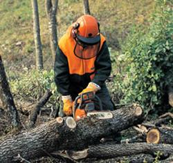testere-ile-odun-kesmek