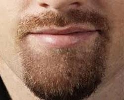 top-sakal