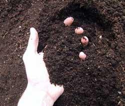 toprak-esmek